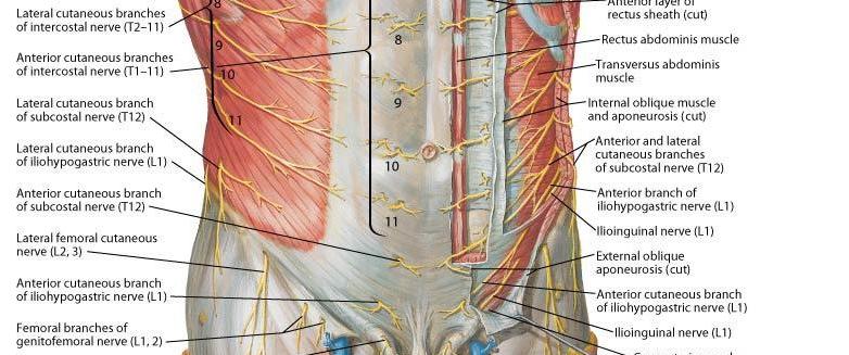 Anatomia de grey 11 x 22 online dating 1